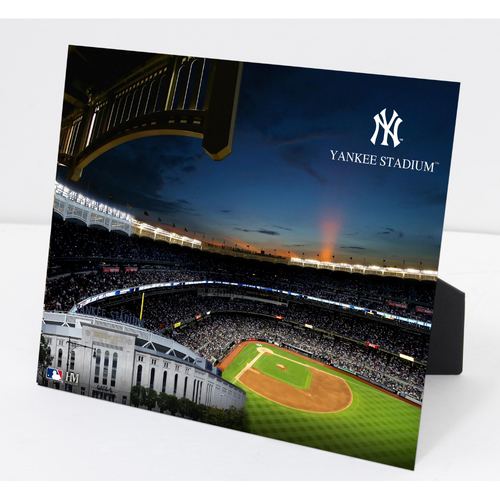 Photo of Yankees Stadium PleXart