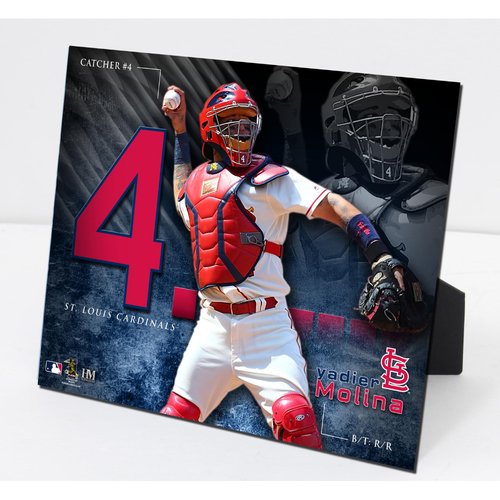 Photo of Yadier Molina PleXart