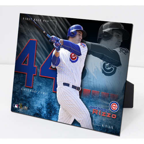Photo of Anthony Rizzo PleXart