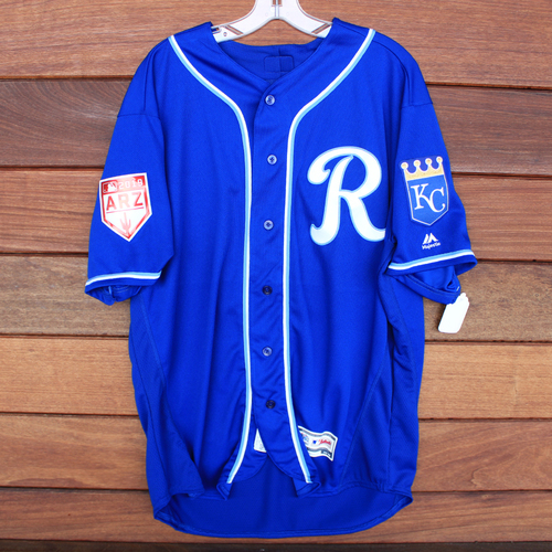 Photo of Team-Issued Spring Training Jersey: Pedro Grifol (Size 48)