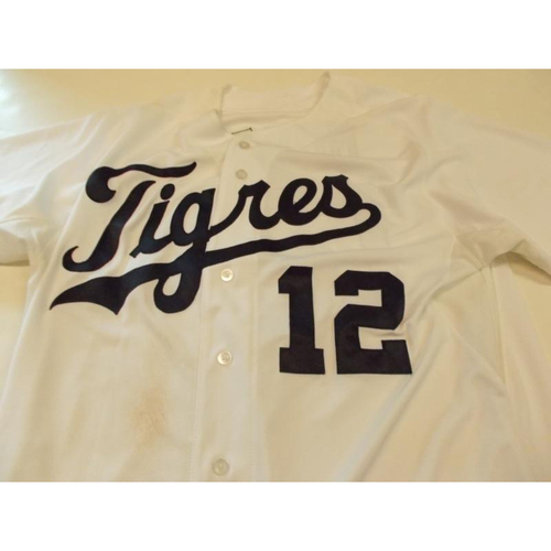 Game-Used Anthony Gose 2015 Fiesta Tigres Jersey