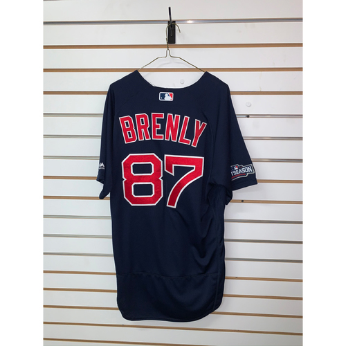 Photo of Mike Brenly Team Issued 2016 Postseason Road Alternate Jersey