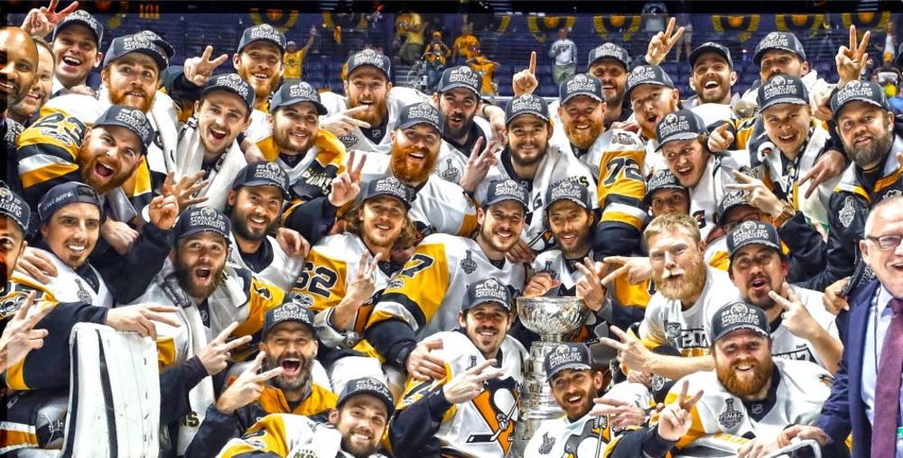 Pittsburgh Penguins -  14x28