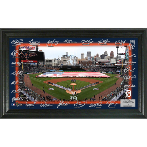 Photo of Detroit Tigers 2018 Signature Field