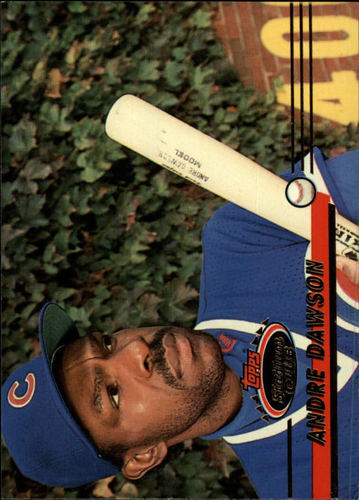 Photo of 1993 Stadium Club #203 Andre Dawson