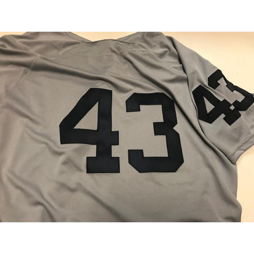 Photo of Game-Used 1968 World Series 50th Anniversary Jersey: Steve Liddle