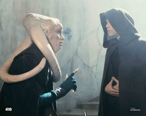 Mark Hamill and Michael Carter as Luke Skywalker and Bib Fortuna