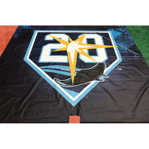 Photo of Tampa Bay Rays Banner: 20th Anniversary Logo - Local Pick-Up Only