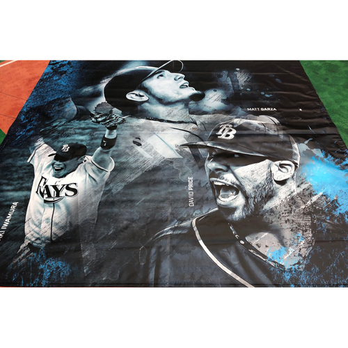 Photo of Tampa Bay Rays Banner: Matt Garza, Aki Iwamura and David Price - Local Pick-Up Only