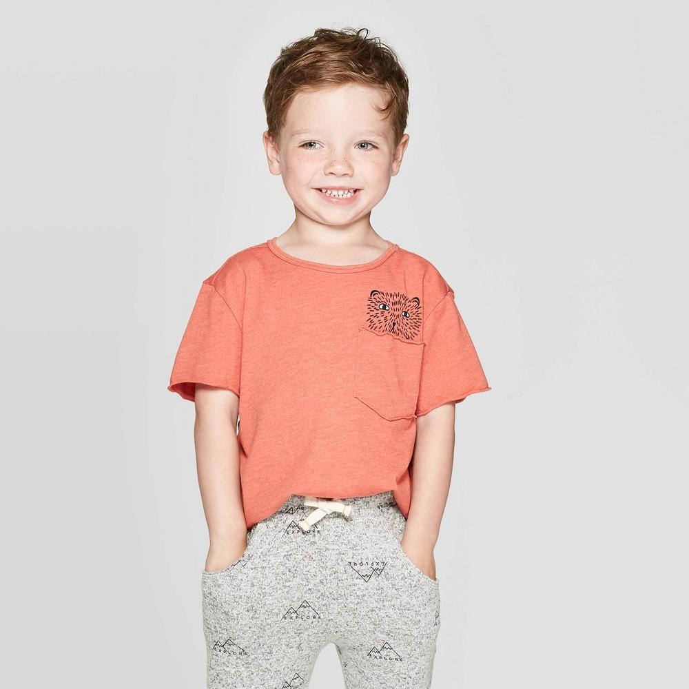 Photo of Toddler Boys' Short Sleeve Graphic Pocket T-Shirt