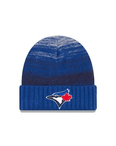 Toronto Blue Jays Snug Knit Toque by New Era