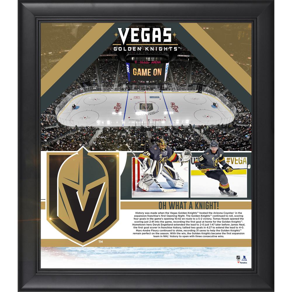 Vegas Golden Knights Framed 15