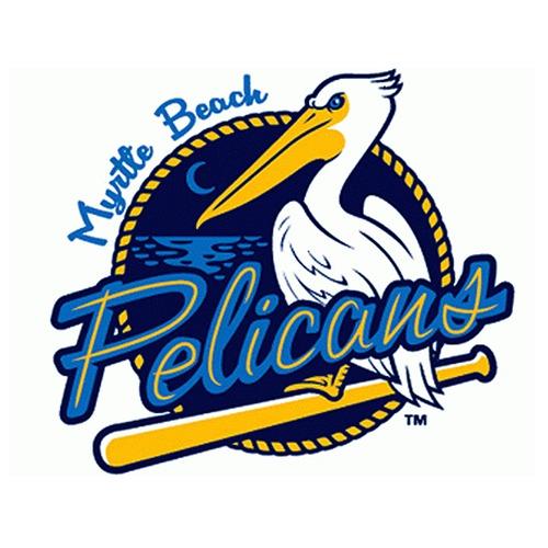 UMPS CARE AUCTION: Myrtle Beach Pelicans (Rangers A Adv) 8 Reserve Box Tickets Plus