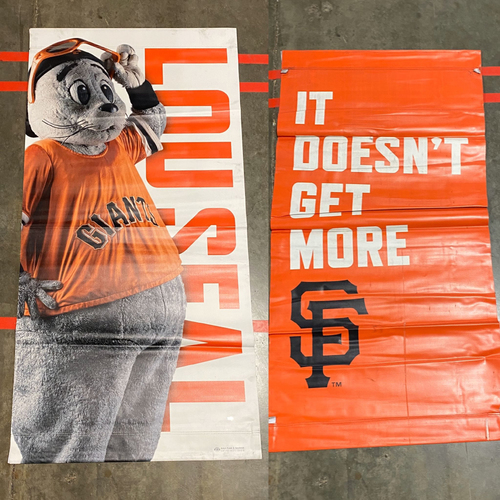 Photo of 2019 Street Banner - Lou Seal