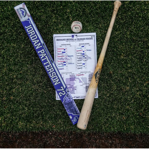 Game-Used Jordan Patterson Rookie Year Collection