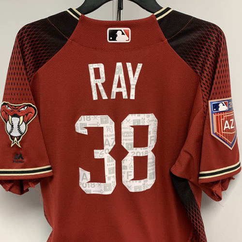 Photo of Robbie Ray Team Issued Jersey