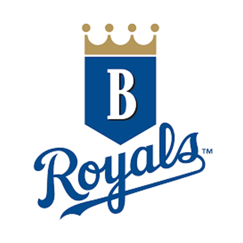 Photo of UMPS CARE AUCTION: Burlington Royals (Rookie) Play Ball Experience with Tickets for 2