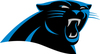 Panthers Fan Experience - Week 15 - Includes 2 Pre Game Sideline Passes + 2 Club Level Tickets + Julius Peppers Signed Canvas Print 11X14