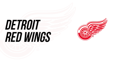 Detroit Red Wings Nhl Auction