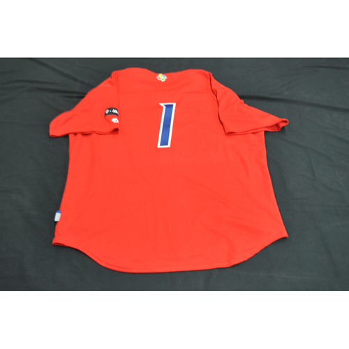 Photo of 2017 World Baseball Classic Batting Practice Jersey - Carlos Correa - Puerto Rico (Size XL)