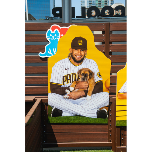 Photo of Fernando Tatis Jr. Autographed Pet Cutout (Not MLB Authenticated, COA Included) and PupBox
