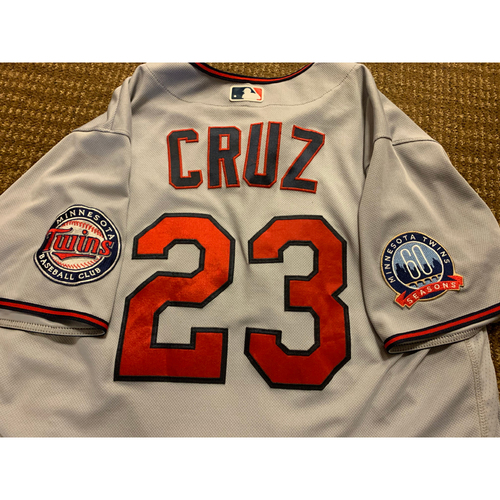 Photo of Nelson Cruz Team-Issued Jersey