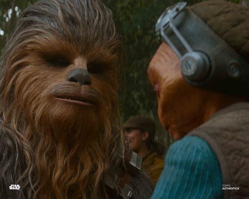 Maz Kanata and Chewbacca