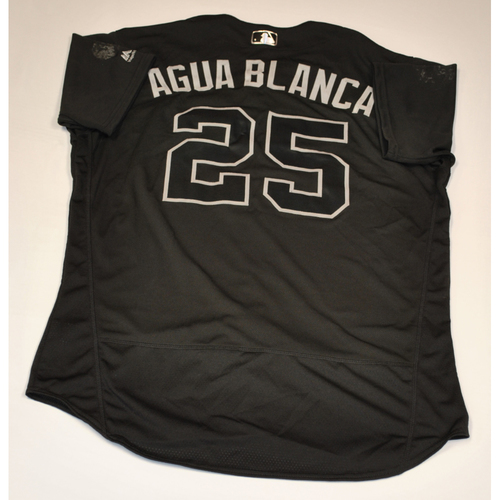 "Photo of Anthony ""AGUA BLANCA"" Santander Baltimore Orioles Game-Used 2019 Players' Weekend Jersey"