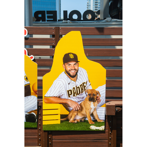 Photo of Eric Hosmer Autographed Pet Cutout (Not MLB Authenticated, COA Included) and PupBox