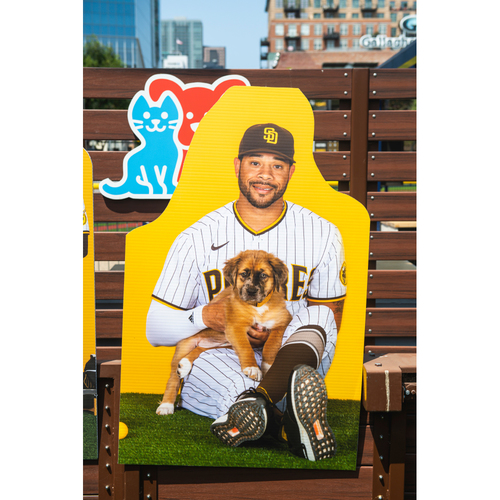 Photo of Tommy Pham Autographed Pet Cutout (Not MLB Authenticated, COA Included) and PupBox