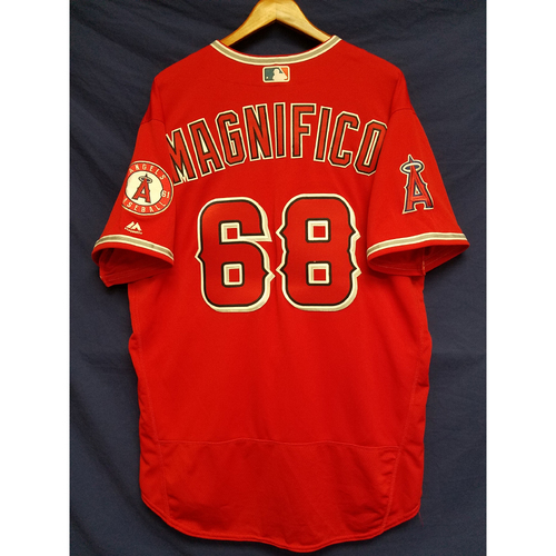 Photo of Damien Magnifico Alternate Red Team-Issued Jersey