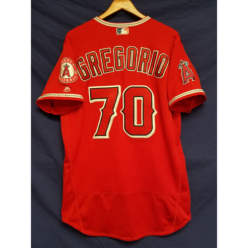 Photo of Tom Gregorio Alternate Red Game-Used Jersey