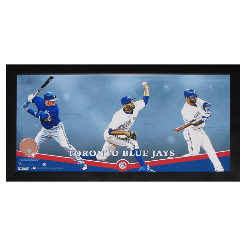 best service 40dc8 cec12 Toronto Blue Jays Framed 10X20 Collage w/dirt from Rogers ...
