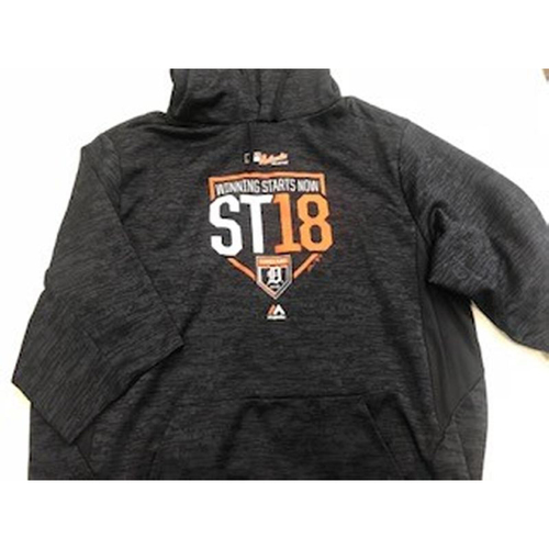 Photo of Team-Issued Spring Training Hoodie #44
