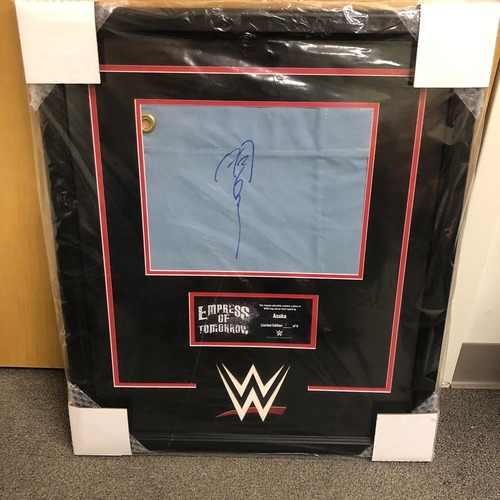 Photo of Asuka Signed & Framed Ring Canvas Plaque (#2 of 6)