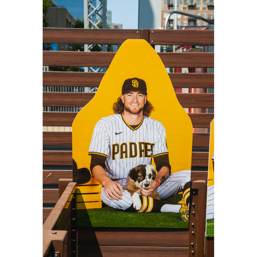 Photo of Chris Paddack Autographed Pet Cutout (Not MLB Authenticated, COA Included) and PupBox