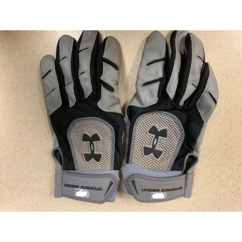 Photo of Minnesota Twins - Eduardo Nunez Team Issued Batting Gloves
