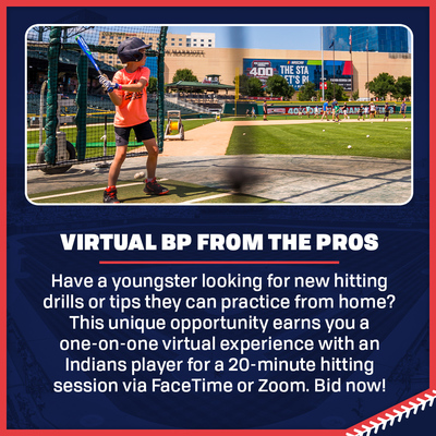 Virtual Batting Practice from the Pros