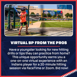 Photo of Virtual Batting Practice from the Pros