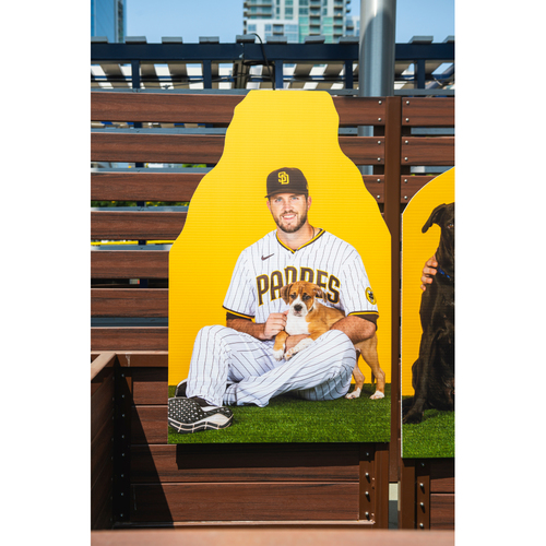 Photo of Drew Pomeranz Autographed Pet Cutout (Not MLB Authenticated, COA Included) and PupBox