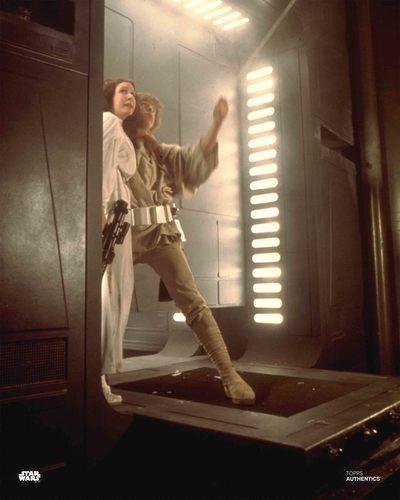 Luke Skywalker and Princess Leia Organa