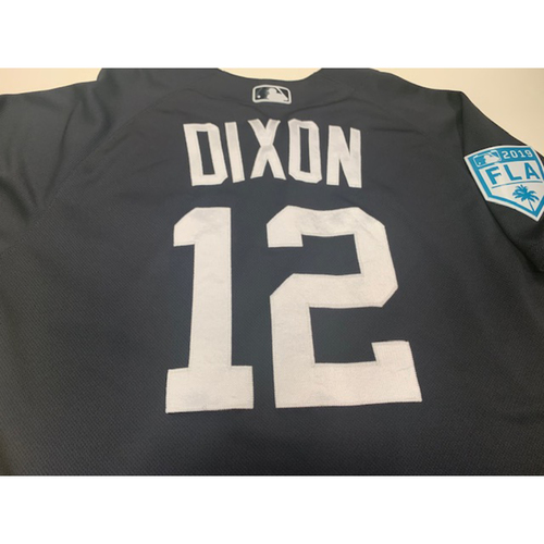 Photo of Team-Issued Brandon Dixon Home Spring Training Jersey