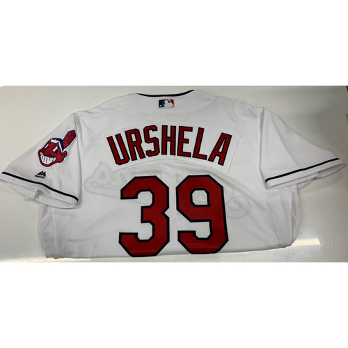 Photo of Gio Urshela Team-Issued Home Jersey