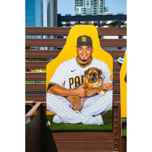 Photo of Dinelson Lamet Autographed Pet Cutout (Not MLB Authenticated, COA Included) and PupBox