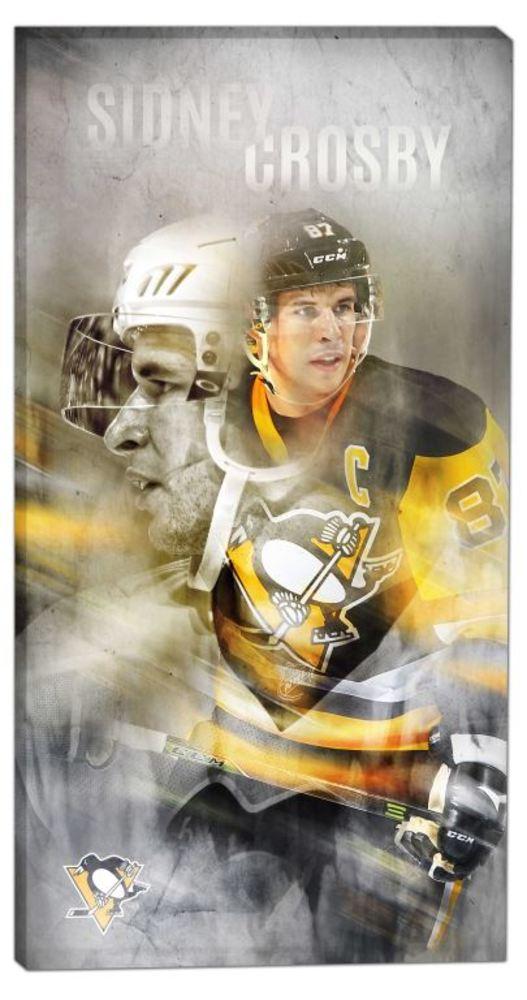 Sidney Crosby - 14x28