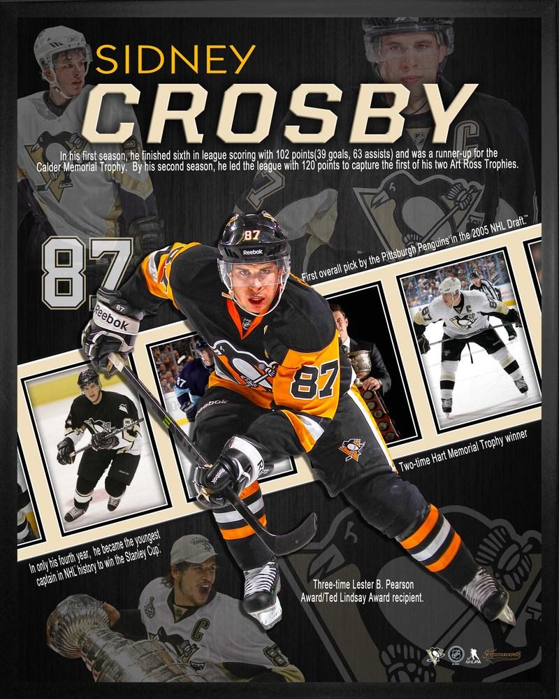 Sidney Crosby - 16x20