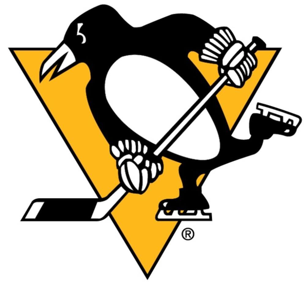 Radim Zohorna Pittsburgh Penguins