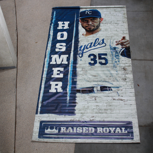 Photo of Extra Large Team-Issued Banner: Eric Hosmer Raised Royal